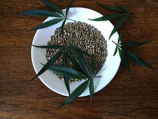 How to use hemp oil in your diet
